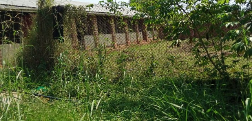 Plots for sale in Kwabili Bombo road at shs 360,000,000