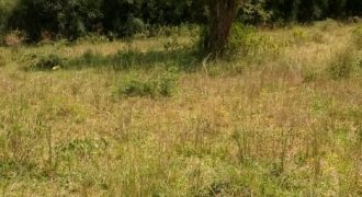 Plot for sale in Gayaza Homes darlen at shs 75,000,000