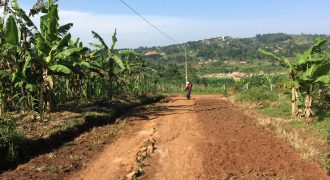 Land for sale in Wakiso at shs 12,000,000