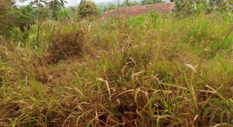 Plots for sale in Gayaza Kibubu at shs 80,000,000