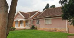 Houses for sale in Bukoto at shs 700,000,000