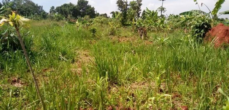Plots for sale in Nangabo at shs 120,000,000