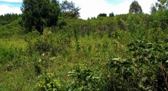 Land for sale in Zirobwe Wabutungulu at shs 10,000,000