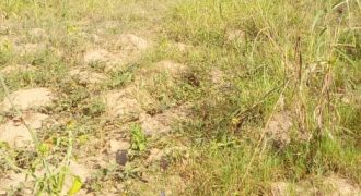 Plots for sale in Kungu at shs 65,000,000