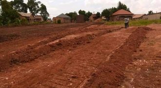 Plots for sale in Wakiso shs 35,000,000