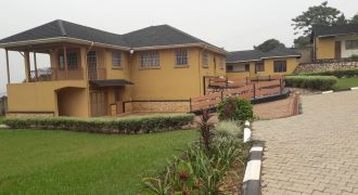 House on sale along Mutungo hill at shs 800,000 US dollars