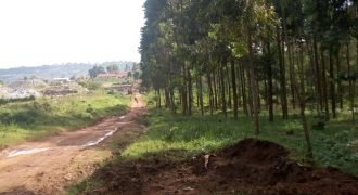 Land for sale in Lweza at shs 200,000,000
