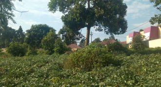 Plots for sale in Seeta Gwaffu at shs 250,000,000