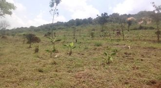 Plot for sale in Buddu at shs 50,000,000