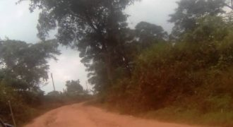 Plots for sale in Busukuma at shs 37,000,000
