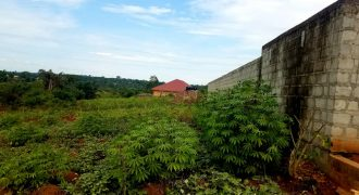 Plots for sale in Kira at shs 200,000,000