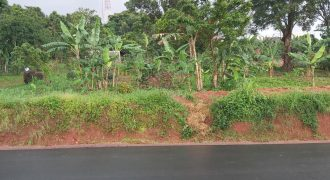 Plots for sale in Kigo at shs 900,000,000