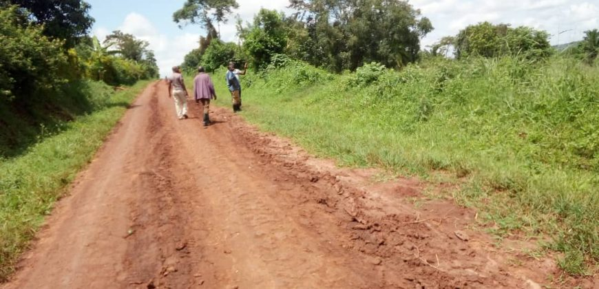 Plots for sale in Kikyusa town at shs 3,000,000
