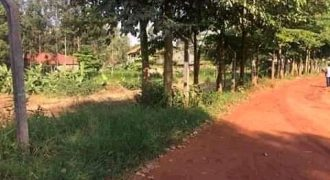 Plots for sale in Kyanja at shs 620,000,000 per acre.