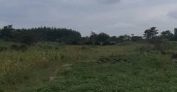 Plots for sale in Kawoko luwero district at shs 5,000,000