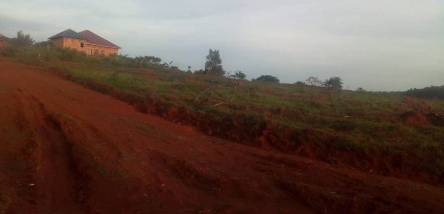 Plots for sale in Busika at shs 40,000,000