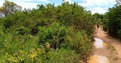Land for sale in Matugga Sanga at shs 10,000,000