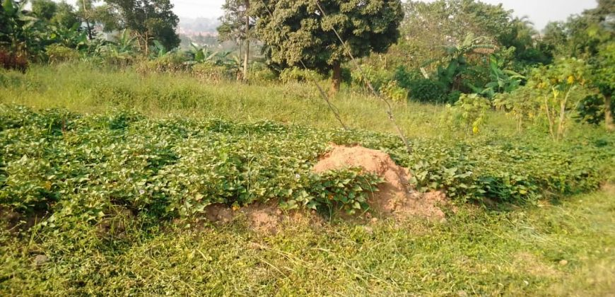 Plots for sale in Seeta Mukono at shs 250,000,000