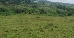 Farmland for sale in Busiika at shs 50,000,000