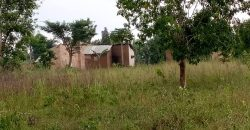 Land for sale in Bombo at shs 16,000,000