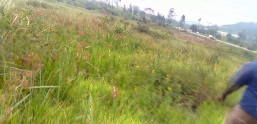Plots for sale in Lwayonyi at shs 500,000,00