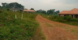 Plots for sale in Wanonda Luweero at shs 7,000,000