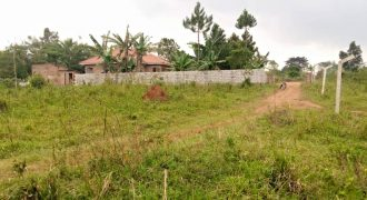 Plots for sale in Wakiso Mabobwe village at shs 20,000,000
