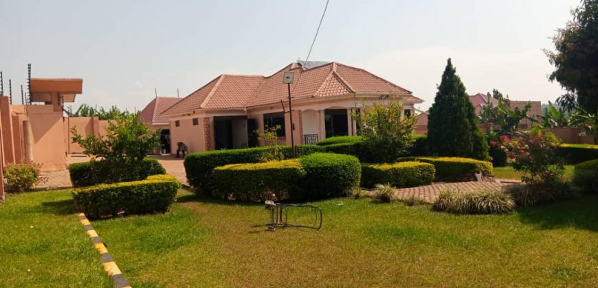 Houses for sale in Kiwenda at shs 290,000,000