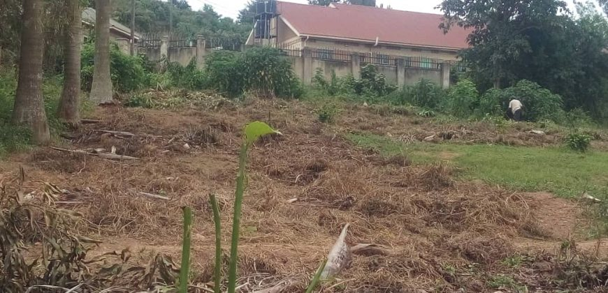 Plots for sale in Luwero Ndimulodi at shs 8,000,000