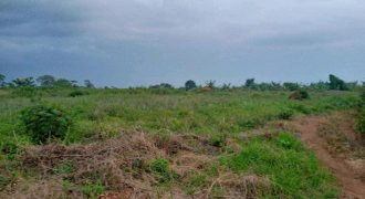 Land for sale in Nagalama Nakifuma at shs 33,000,000