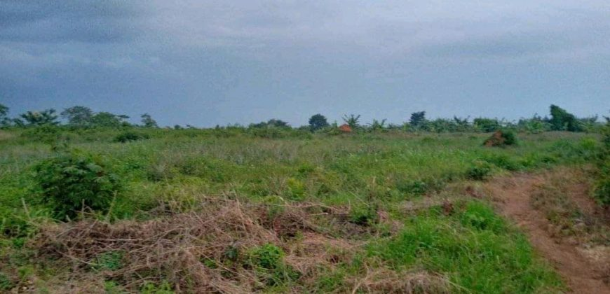 Land for sale in Mbalwa at shs 350,000,000