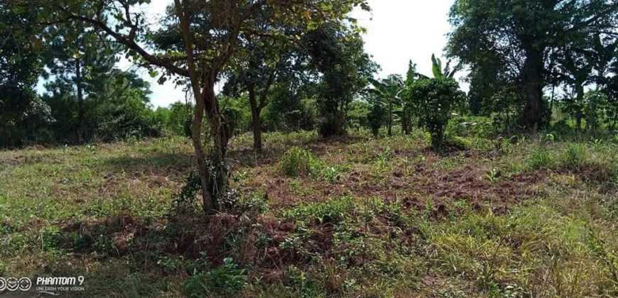 Plots for sale in Mubende at shs 3,000,000