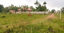 Plots for sale in Naalya at shs 65,000,000