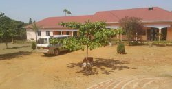 Plots for sale in Lutemba at shs 350,000,000