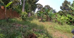 Plots for sale in Nakawuka Hill at shs 83,000,000