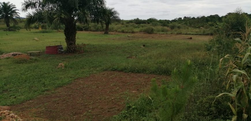 2 acres with clear lake view on sale located at Garuga Bugabo