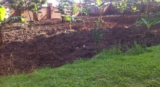 Plots for sale in Kiboga at shs 4,500,000