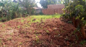 Plots for sale in Kira Mulawa at 270,000,000