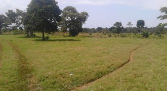 Plot for sale in Canaan Estate Manyangwa at shs 35,000,000
