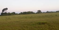 Plots for sale in Joggo at shs 60,000,000