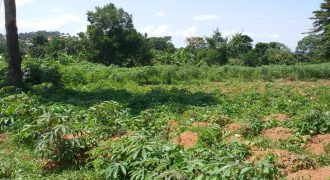 Plots for sale in Kalagi town Kayunga road at shs 50,000,000