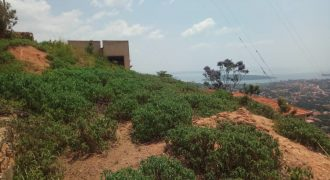 Plots for sale in Buziga at shs 450,000,000