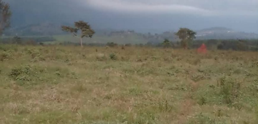 Plots for sale in Lwamata at shs 2,300,000