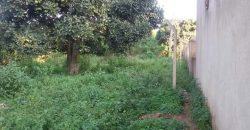 Plots for sale in Entebbe at shs 180,000,000