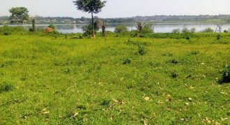 Plots for sale in Zziba at shs 100,000,000