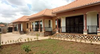 Rental units for sale in Kungu at shs 350,000,000