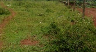 Plots for sale in Kitende at shs 70,000,000
