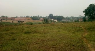Plots for sale in Bweyogerere Bbuto at shs 200,000,000