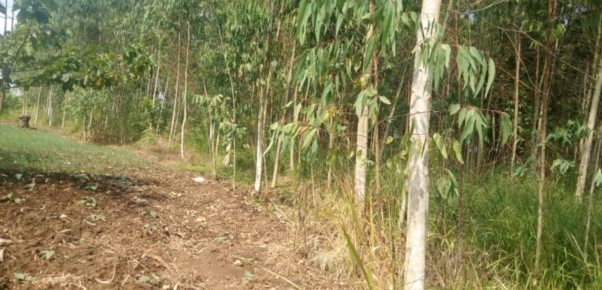 Plots for sale in Namugongo Sonde at shs 40,000,000
