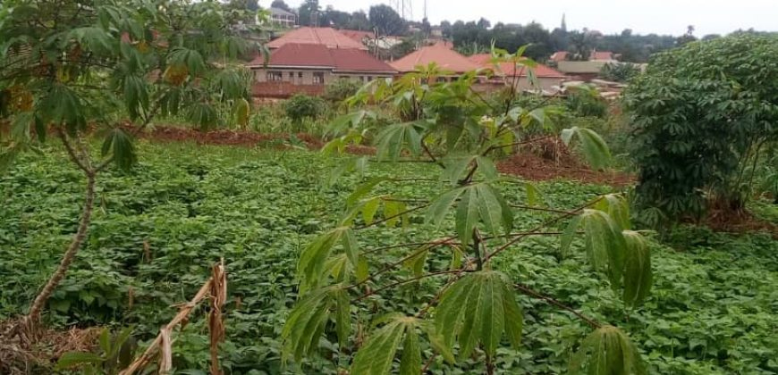Plots for sale in Bunga Kawuku at shs 550,000,000